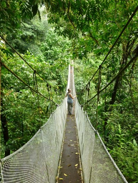 Suspension bridge in Rain Maker